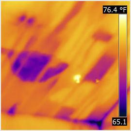 Moisture Problem Infrared